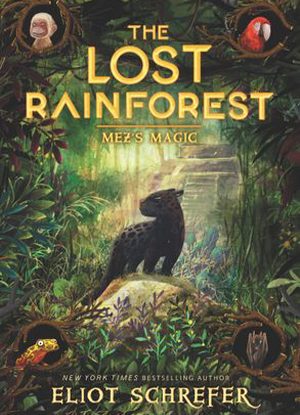 The Lost Rainforest:  1 - Mez's Magic