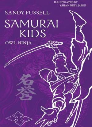 Samurai Kids:  2 - Owl Ninja